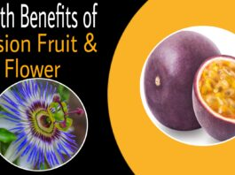 Passion fruit and passion flower